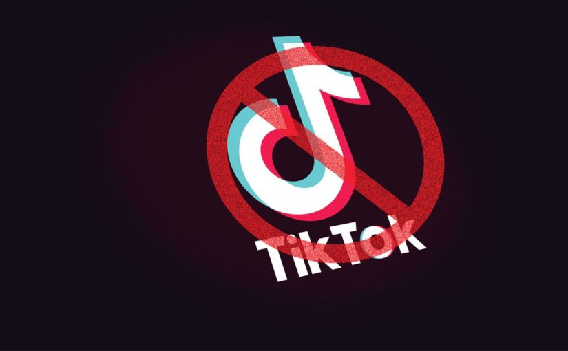 Why Is TikTok Getting Banned ???